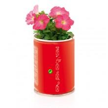 Llauna torratxa  personalitzat flors Petunia